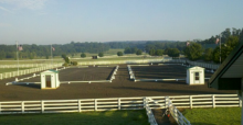 6th Annual Breed & Dressage Show I & II – August 1-4, 2013