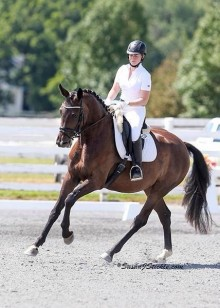 Canter at show
